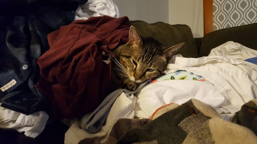 Trapped under a clothes avalanche.